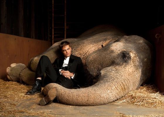 Rede Globo irá exibir Água Para Elefantes no próximo sábado!